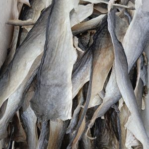 Dried Fish Skins